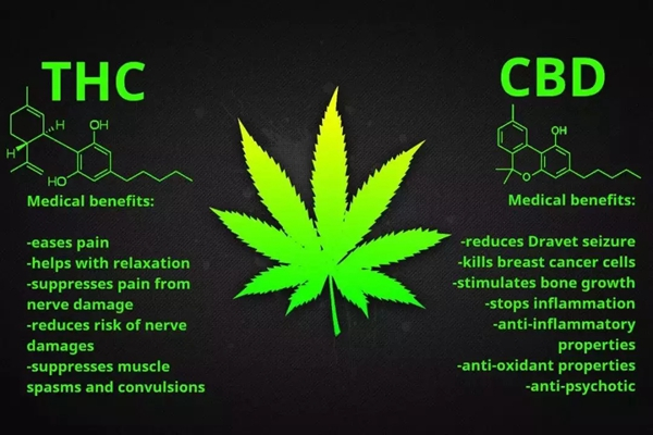 made me smile and thought about how amazing cannabis actually
